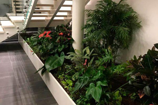 Allestimento Uffici Privati - Verde Pensile Indoor