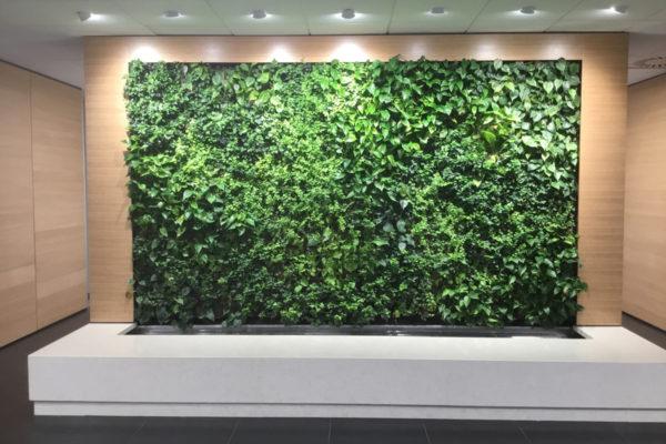 Lizard system vertical greenery