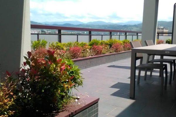 Penthouse in Terni - Intensive Hanging Greenery
