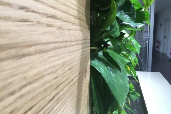 Indoor vertical greenery