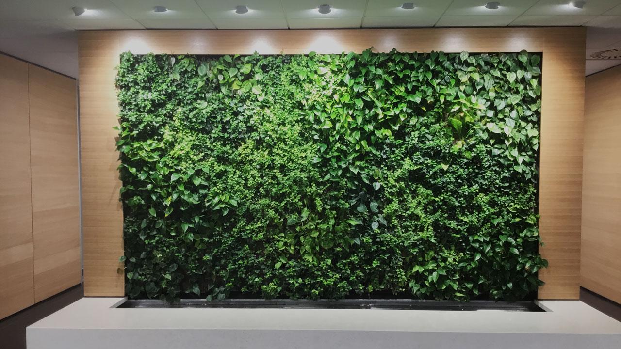Vertical Greenery Indoor